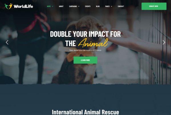 Non-profit Organisation Web Design Theme